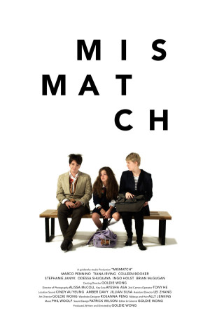 Mismatch poster 2013